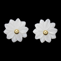 White Shell Earrings, Brass, with White Shell, Flower, gold color plated, nickel, lead & cadmium free, 15x3mm, Sold By Pair