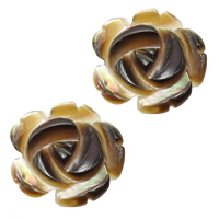 Half Drilled Shell Beads